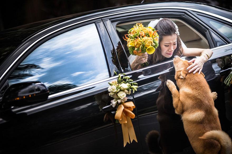 creative-best-wedding-photography-awards-2015-17